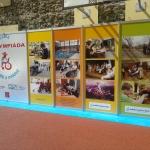 Exposale помогает – Abliympiada 2013